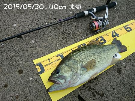 20150530_40cm